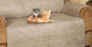 cat proof slipcovers