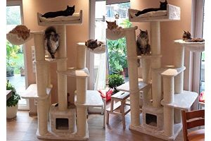 Cat Tree for Large Cats – Cat Empire Beige