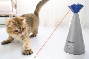 Friends Forever Interactive Cat Laser Toy