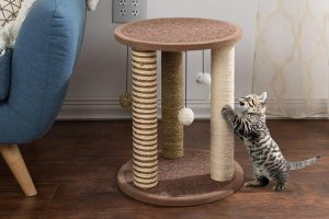 Cat Scratching Posts by PETMAKER