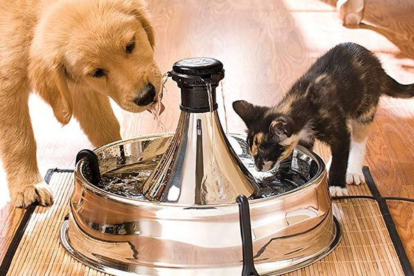 PetSafe Drinkwell 360