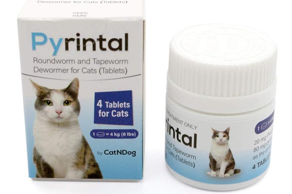 Pyrintal Cat Wormers Roundworm Tapeworm Dewormer Cats