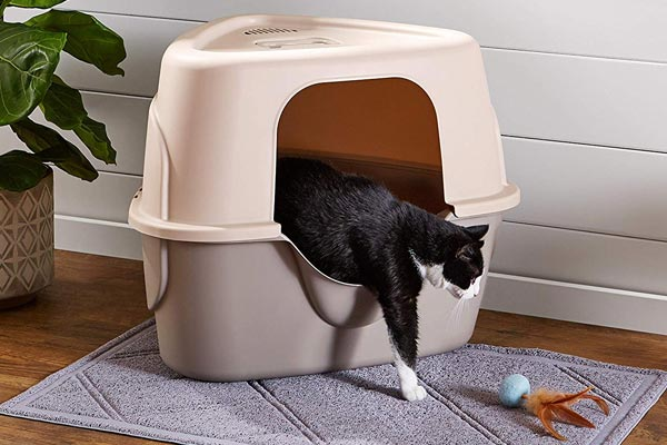 AmazonBasics Cat Litter Box