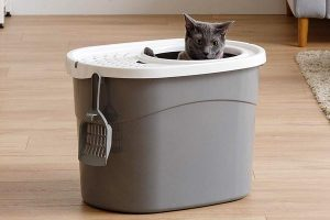 IRIS Top Entry Cat Litter Box with Scoop