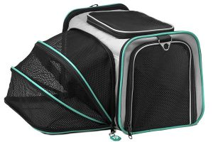 Pawdle Expandable and Foldable Pet Carrier Airline Approved