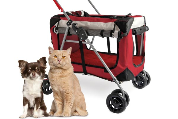 PetLuv Happy Pet Premium 3-in-1