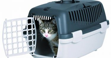 Should I cover the cat carrier when traveling