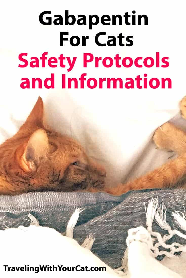 Gabapentin For Cats: Safety Protocols and Information