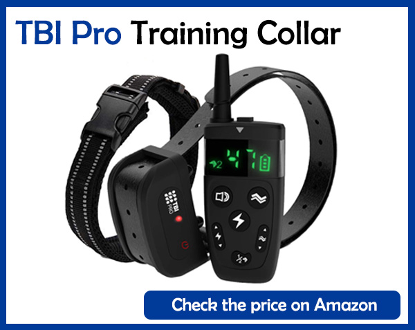 TBI Pro Training Collar