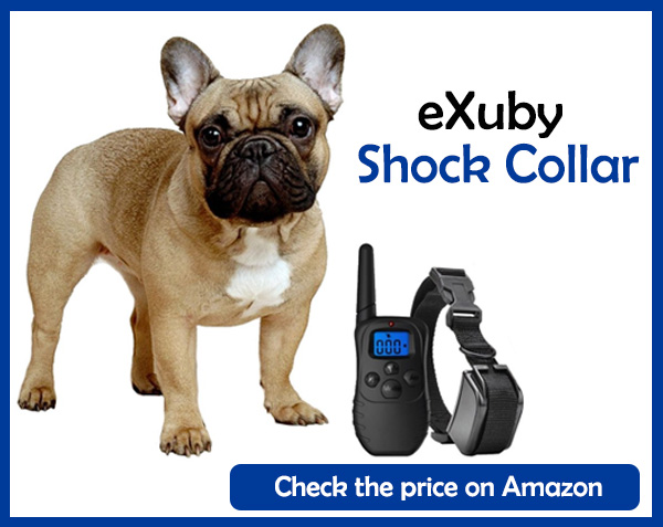 eXuby Shock Collar