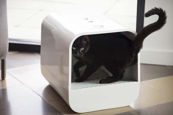 Litter Box Cleaning Hacks