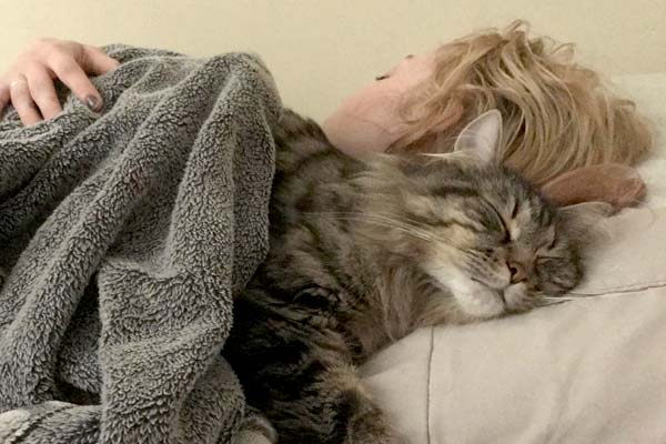 how do cats choose who to sleep with