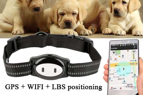 MMKSTO Pet GPS Tracker